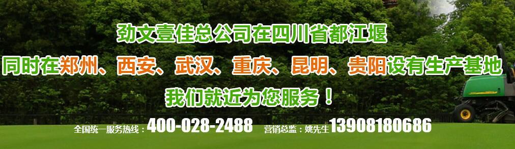 四川排水板厂家